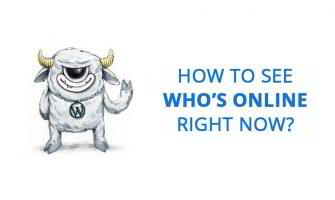 How to See Who's Online on Your WordPress Website?