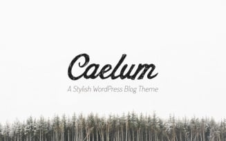 Caelum - Minimalistic WordPress Theme