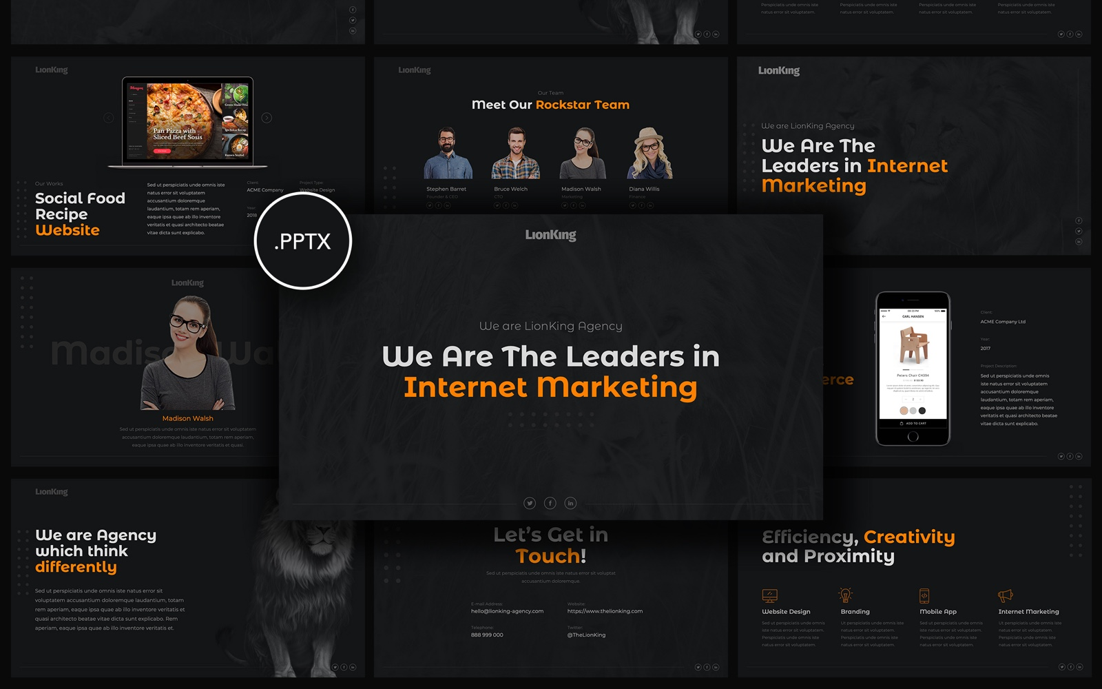 Lion King - Business Presentation PowerPoint Template