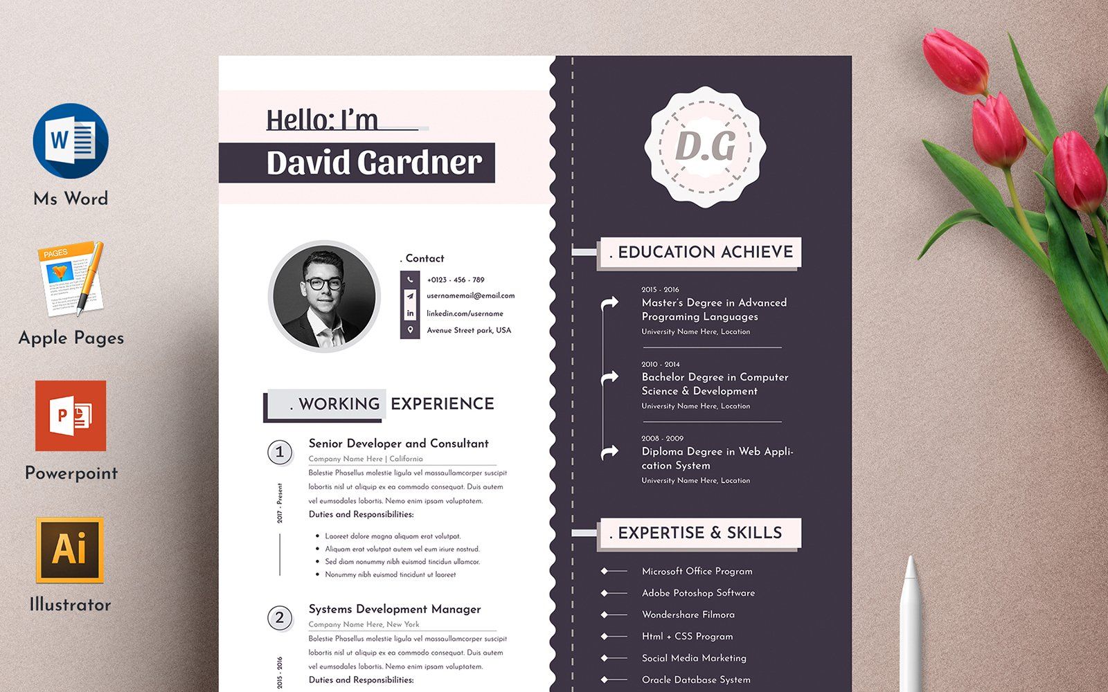 Szablon resume David Modern Word Pages Cv #102340