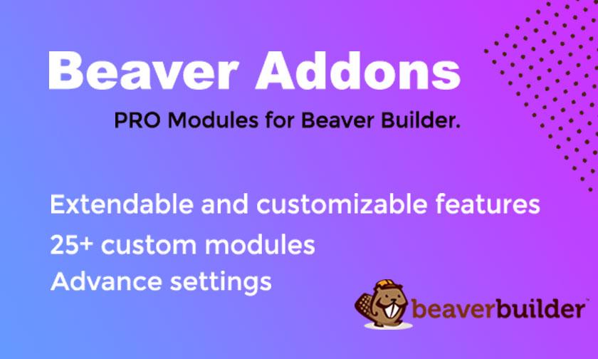 "Modello Plugin per WordPress #105677 ""bAddons for Beaver page Builder"""