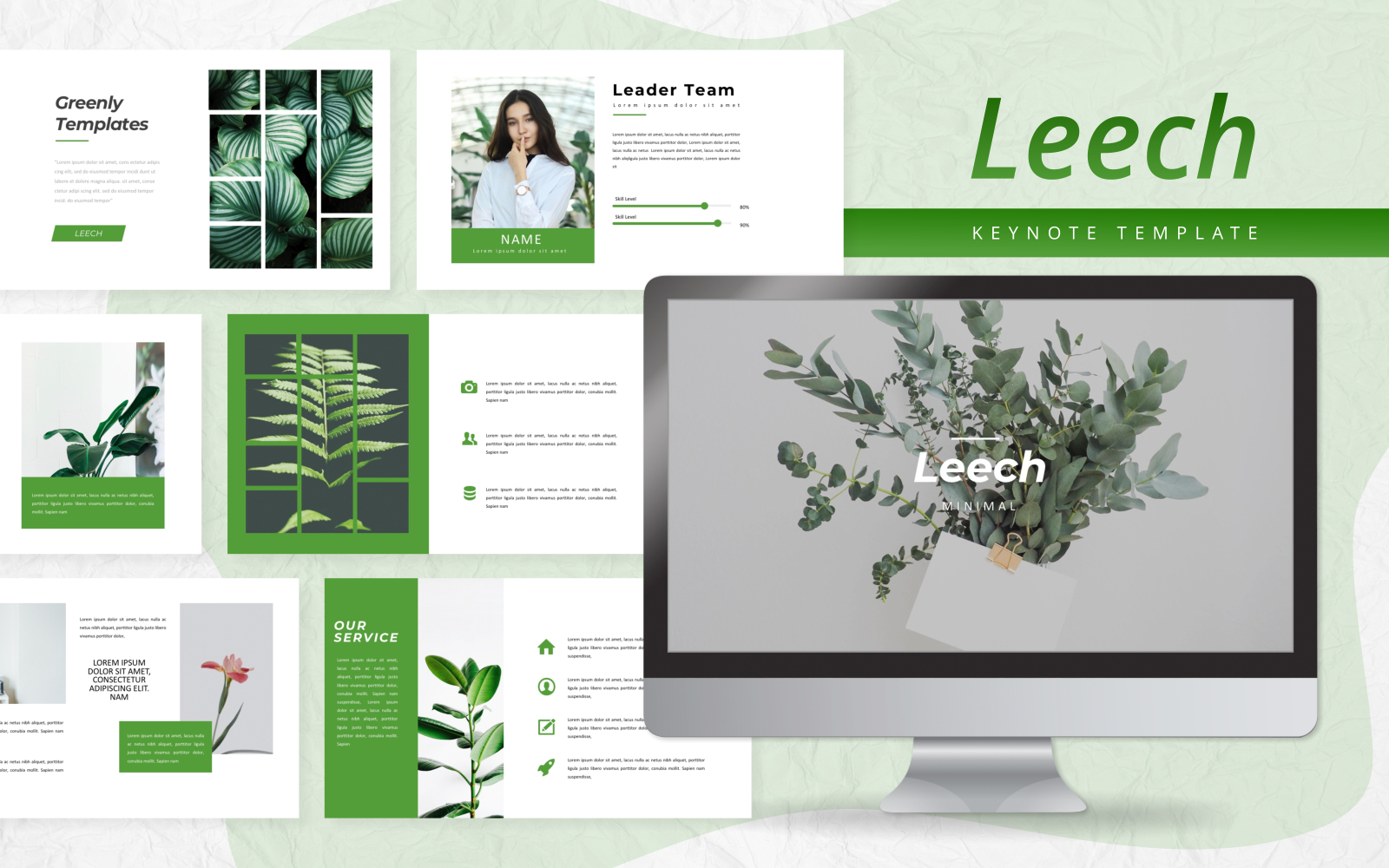 Leech - Creative Presentation Keynote Template