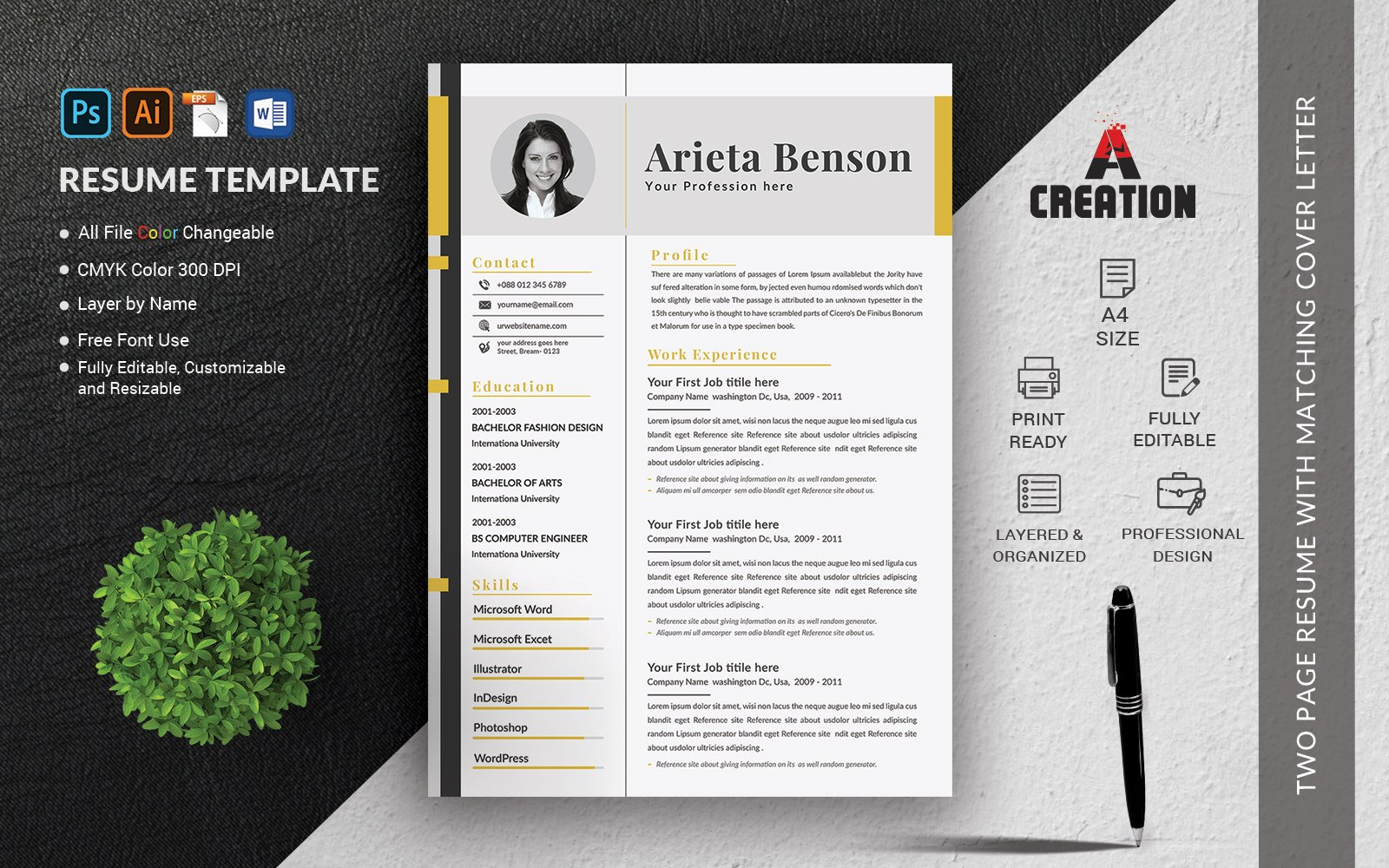 CV Template Layout Resume Template