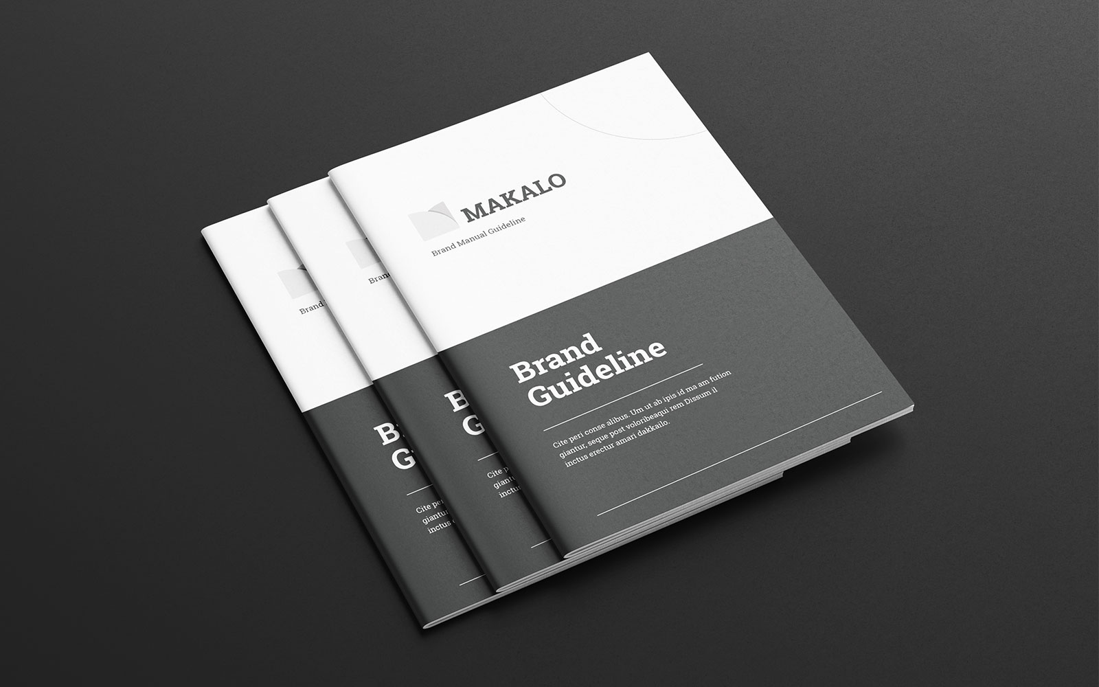 Brand Guideline Brochure Corporate Identity Template