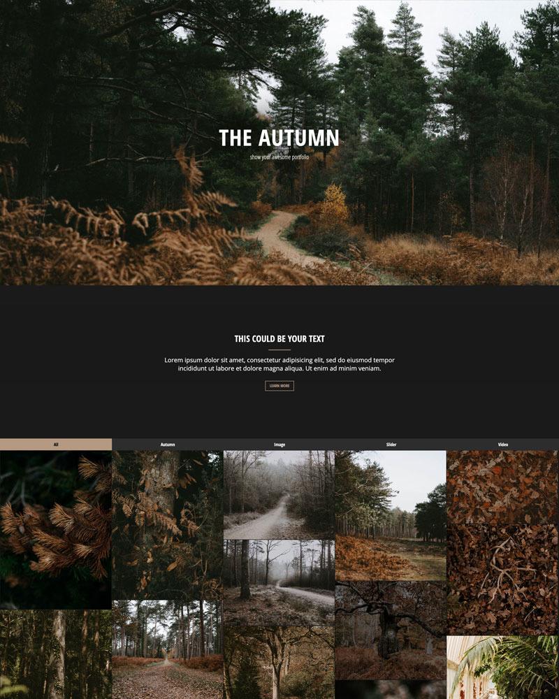The Autumn - HTML - Portfolio | Responsive №113869