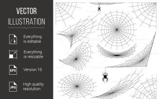 Spider Web - Vector Image