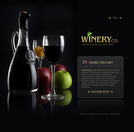 Promovare site companie de vinuri