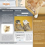denver style site graphic designs cats home club pets cat kitten clinical veterinary vet tips feed medicine staff services breed age color accommodation adaptable apparel bed dishes bowl bone cleanup collar flea tick grooming supplies vitamins recommendation health leash toy
