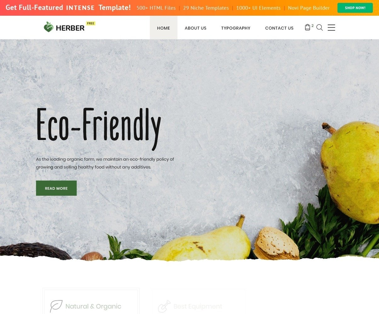 Free Website Template For Food Delivery