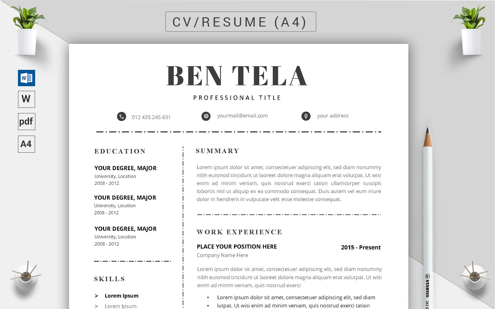 Szablon resume Ben Tela - CV #123184
