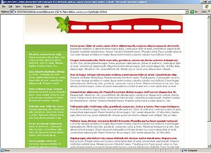Website template 13155