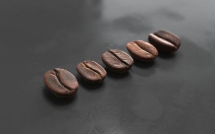 Coffee beans Model