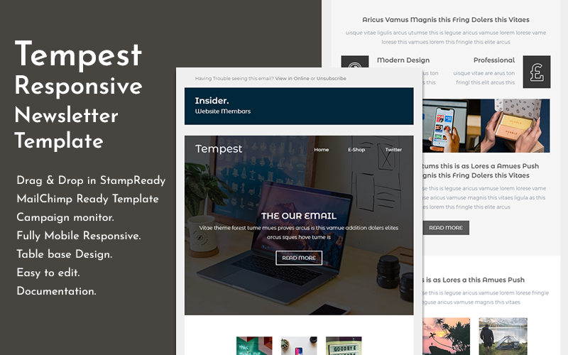"Responzivní Newsletter šablona ""Tempest - Responsive Email"" #150833"