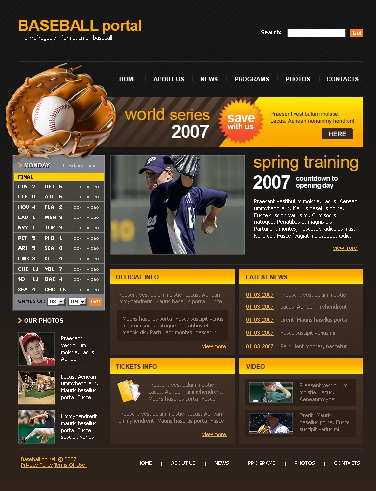Baseball Website Template #15463