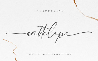Anttelope Luxury Calligraphy Font