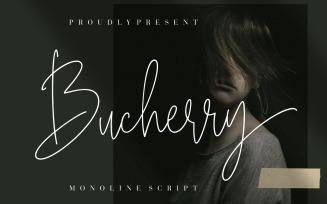 Bucherry Monoline Cursive Font