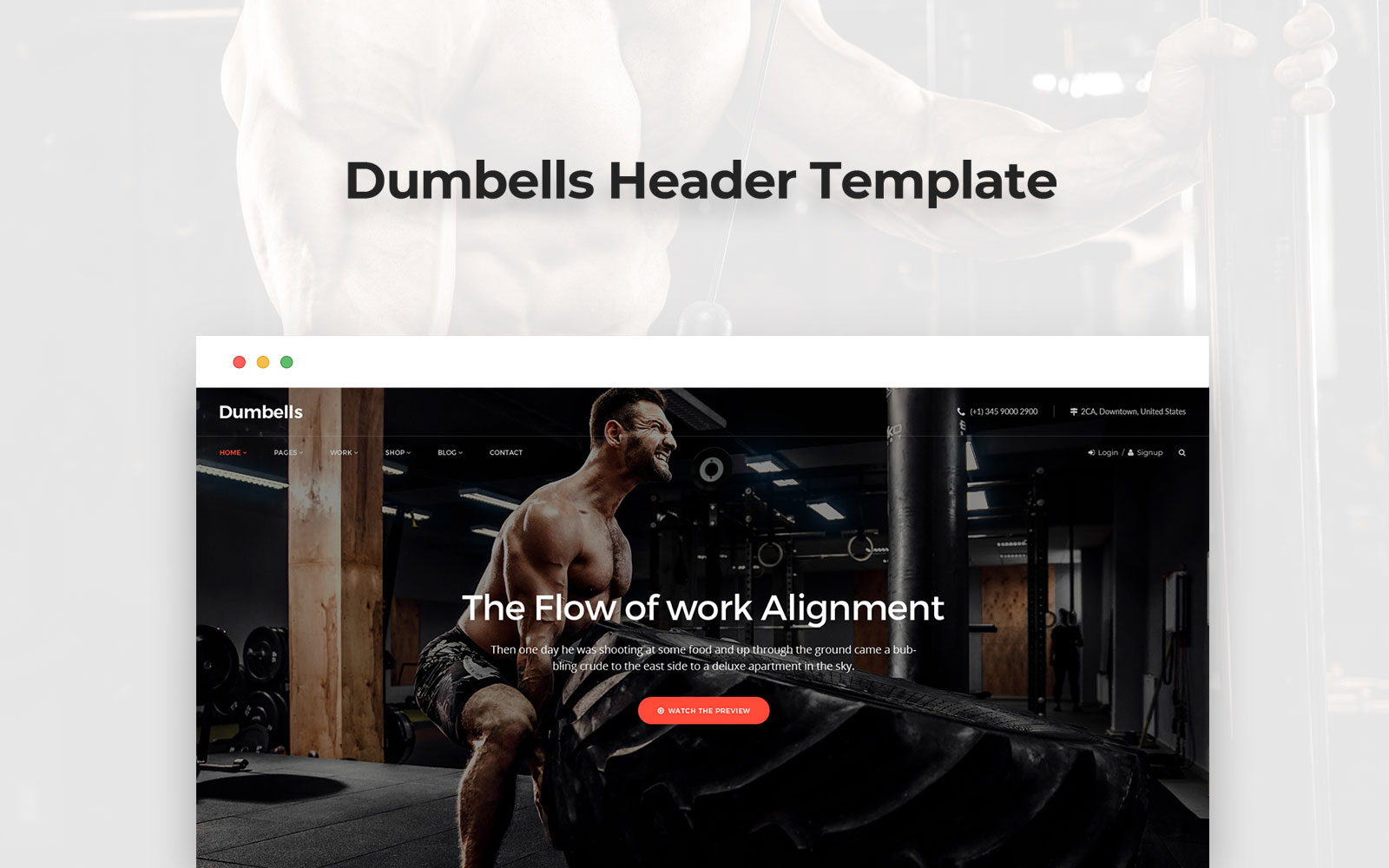 """Dumpbell Header"" PSD Template №158515"
