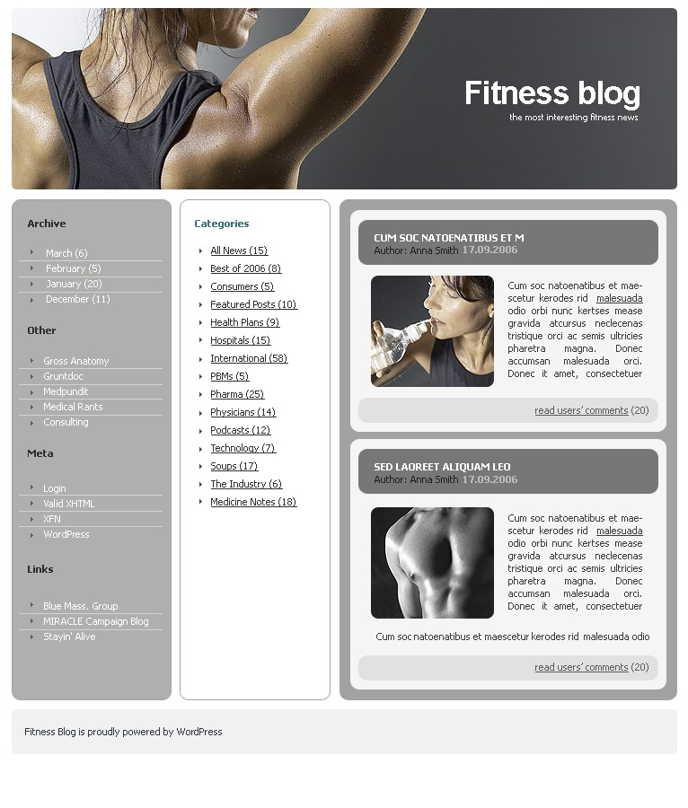 WordPress motiv Fitness #15992 - screenshot