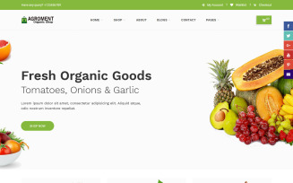 Agroment – Organic Food Website Template