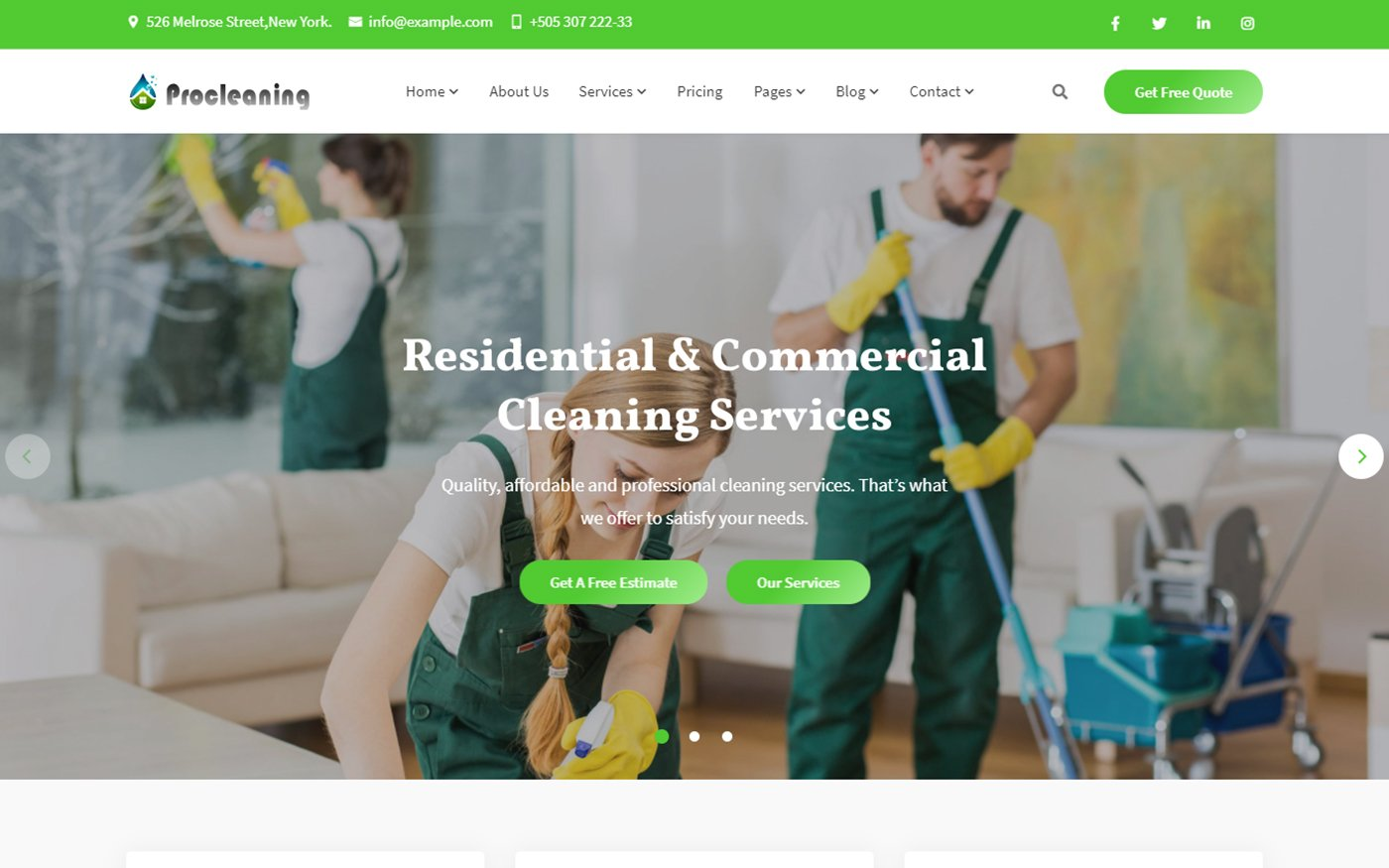 Responsivt ProCleaning - Cleaning Service & Dry Laundry Website Template Hemsidemall #165280