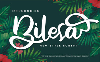 Bilesa | New Style Script Font