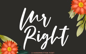 Mr Right Fonts