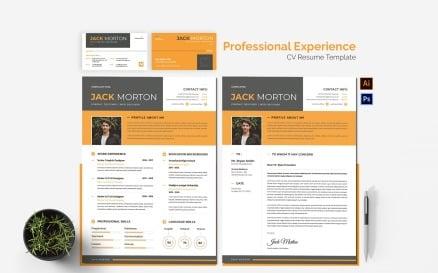 Professional Experience CV Printable Resume Templates