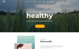 WordPress Theme 185425