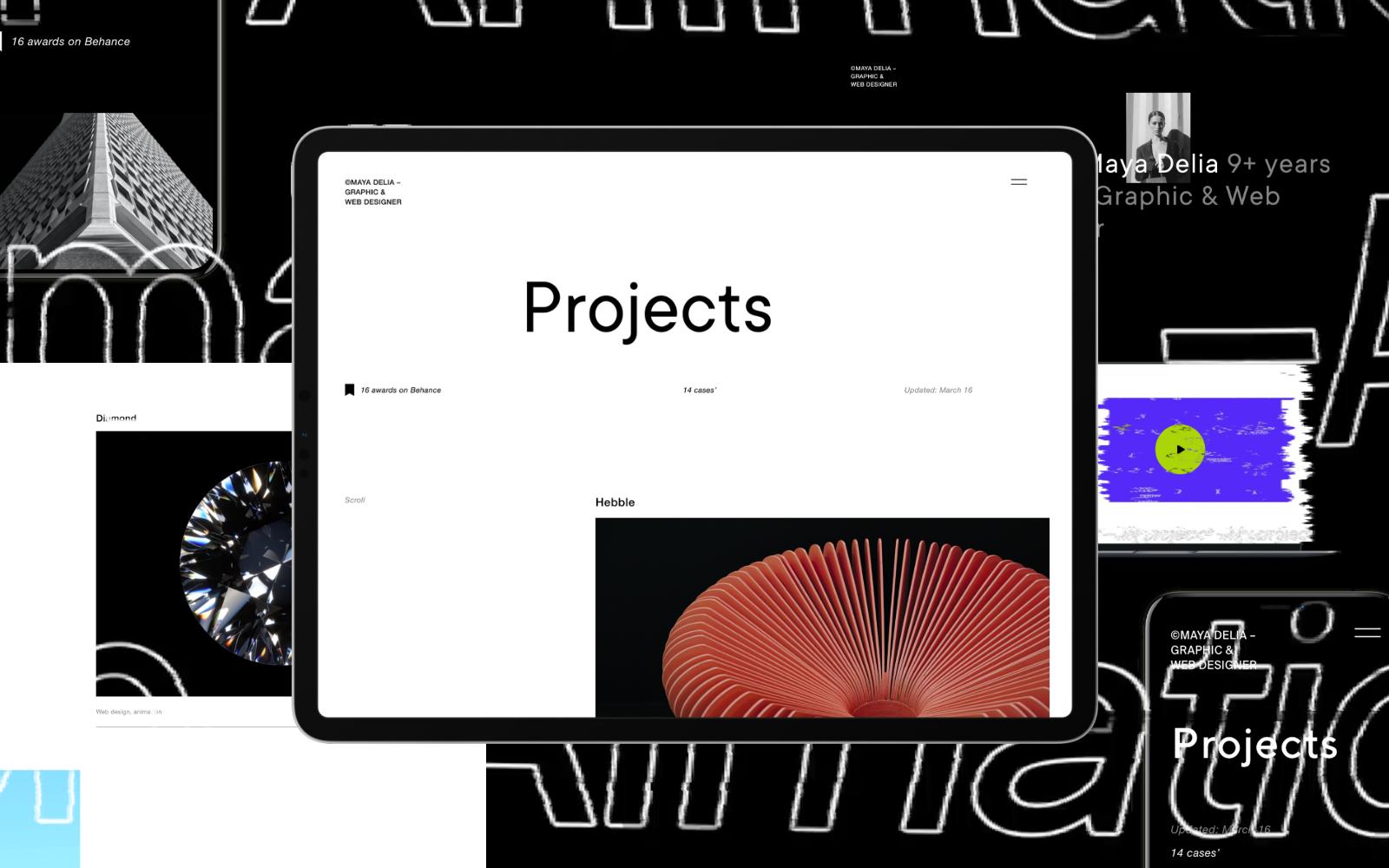 Delia | WordPress-thema voor freelancer