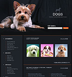 denver style site graphic designs dogs nformation events archive links guestbook journal visitors opinion discussion blogroll pets care health veterinary tips feed breed age color accommodation apparel bed dishes bowl cleanup collar flea tick grooming