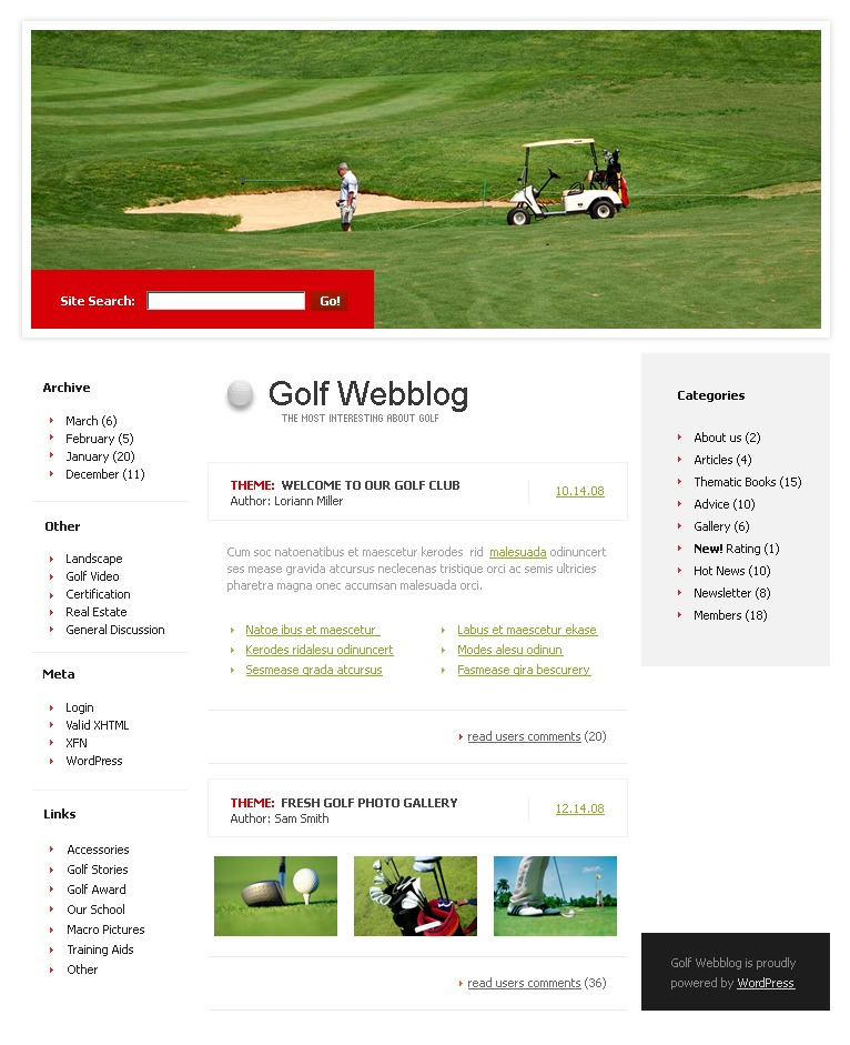 Golf WordPress Theme #19240
