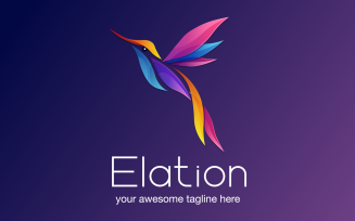 Elation - Colorful Gradient Hummingbird Logo Template