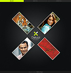 XML Flash: Art & Photography CSS Dynamic Flash Most Popular Premium Templates XML Flash Site Wide Templates Papervision 3D