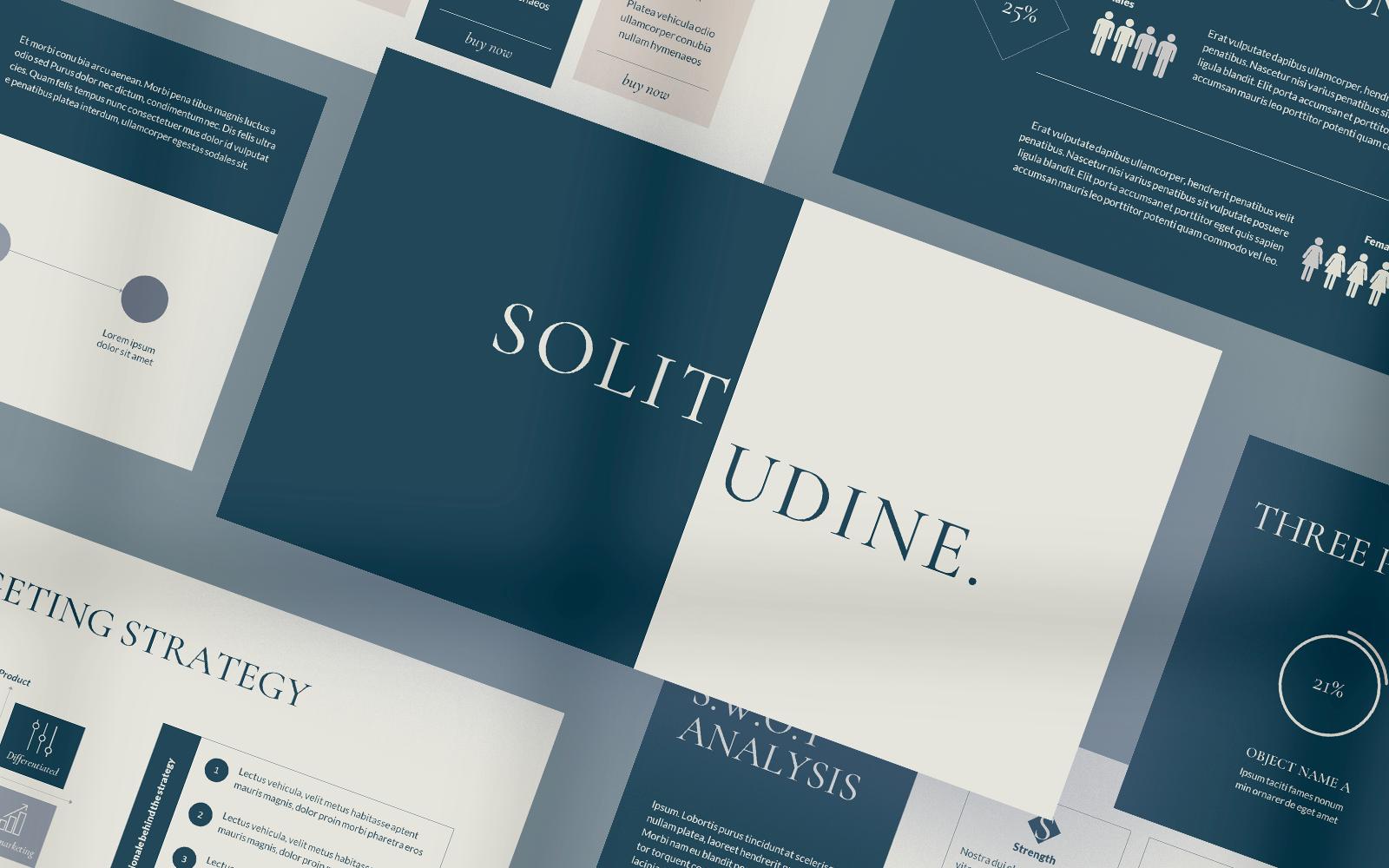 Solitudine - Business Plan PowerPoint Template