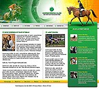 denver style site graphic designs horse riding club
