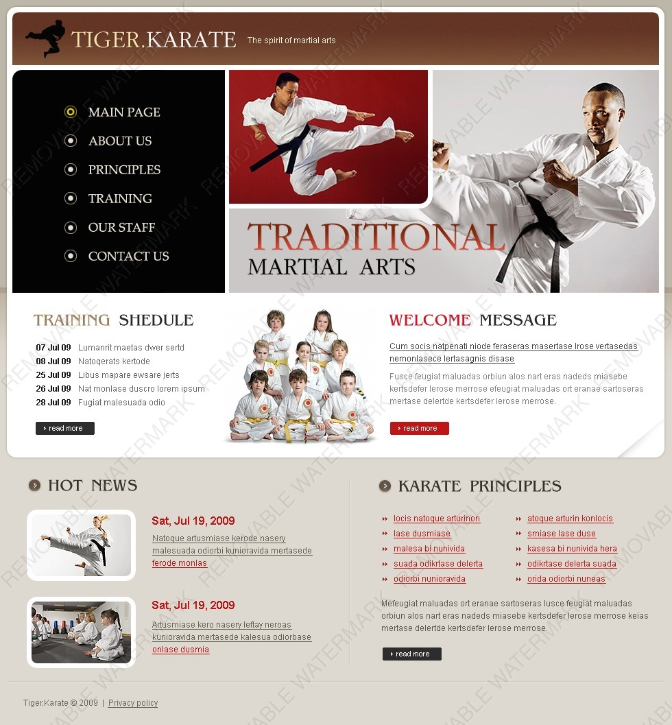 Martial arts website template 23212 by wt website templates martial arts website template toneelgroepblik Images