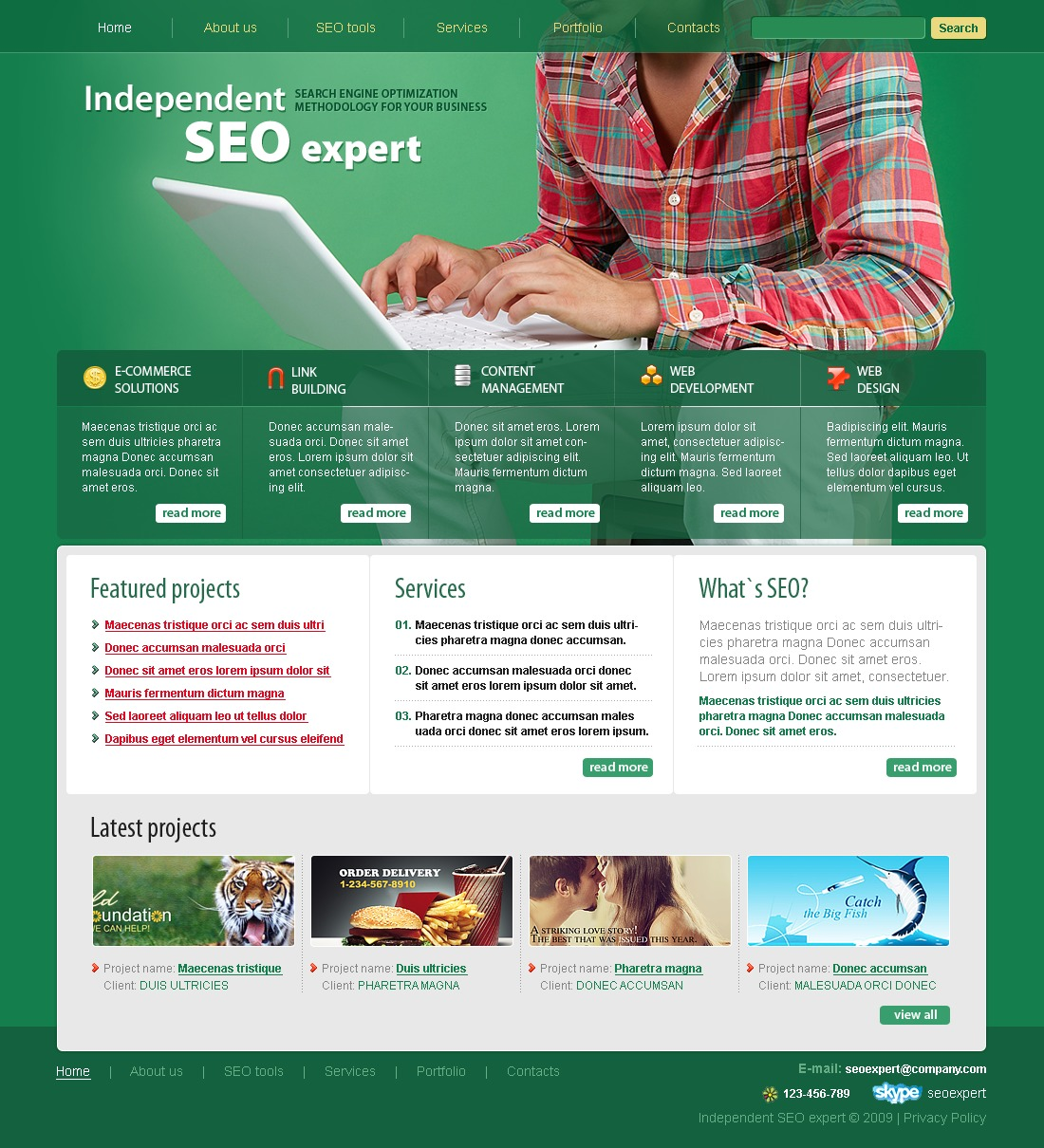 SEO Website Website Template #24941