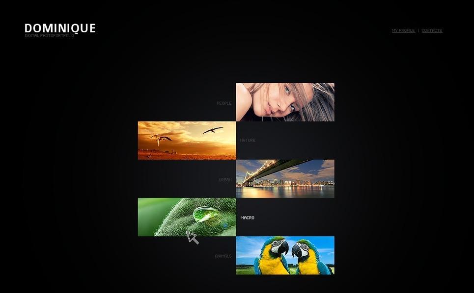 Szablon Flash CMS #26566 na temat: portfolio fotograficzne New Screenshots BIG