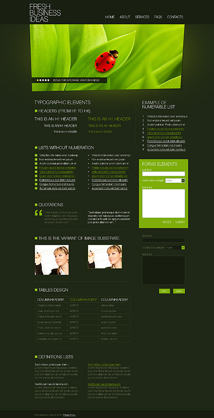 ADOBE Photoshop Template 27821 Home Page Screenshot