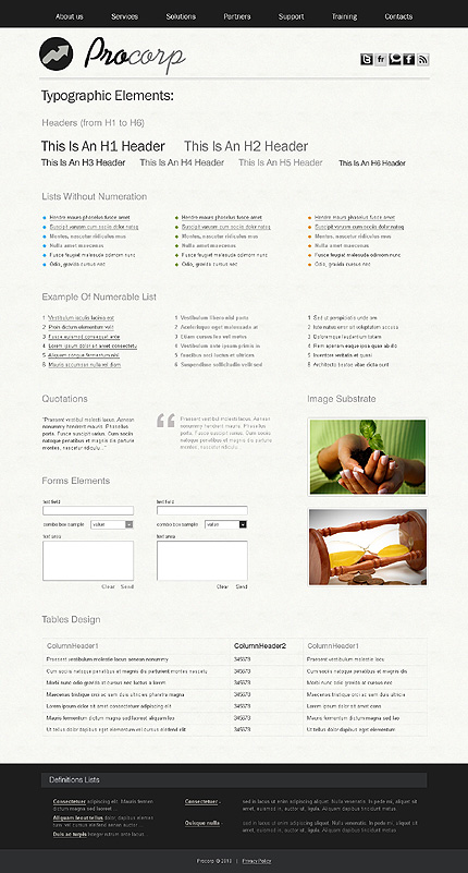 ADOBE Photoshop Template 27823 Home Page Screenshot