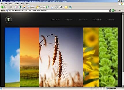 HTML Template 27902 Home Page Screenshot