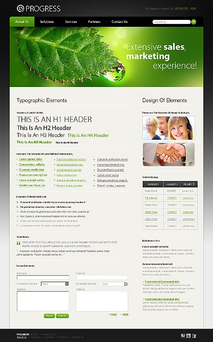 ADOBE Photoshop Template 28212 Home Page Screenshot