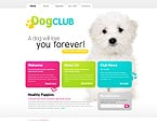 Animals & Pets PSD  Template 28972