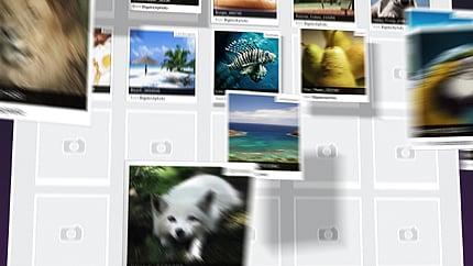 After Effects Intro #29189 para Sitio de Portafolios de fotógrafos