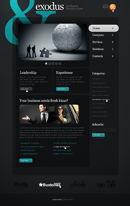 Webdesign afaceri