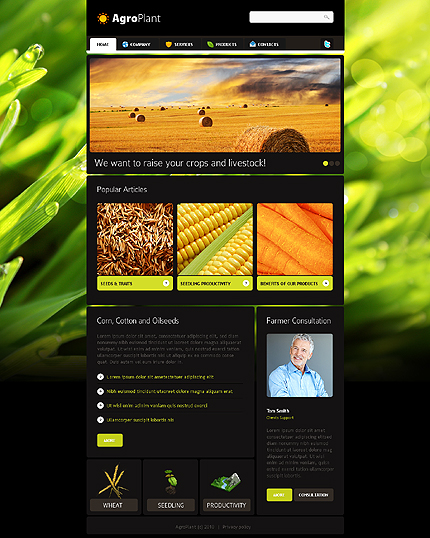 Realizare site agricultura