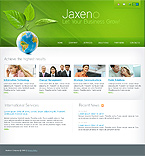 Turnkey Websites 2.0 Template 29674