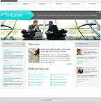 Turnkey Websites 2.0 Template 29685
