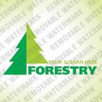 Logo  Template 30346
