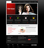 Turnkey Websites 2.0 Template 30520
